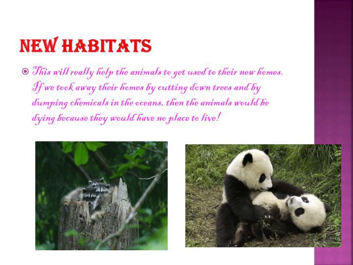 New habitats
