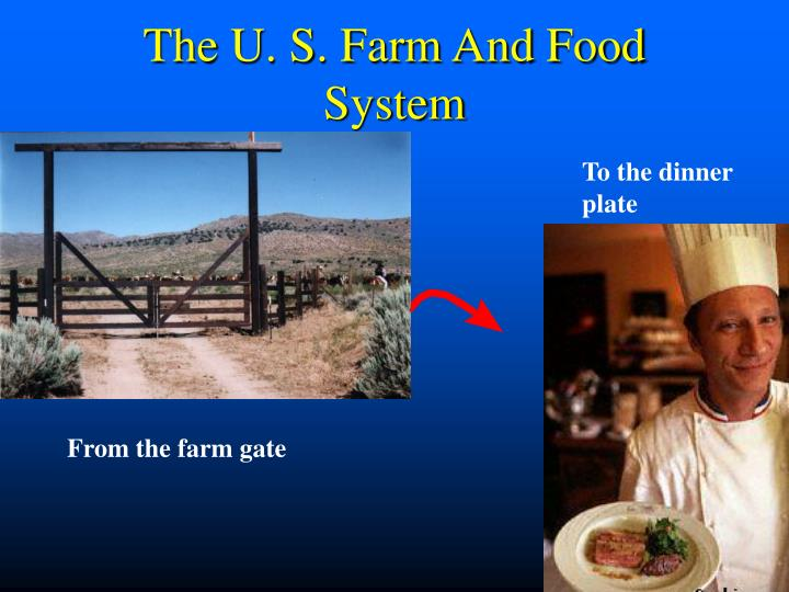the u s farm and food system