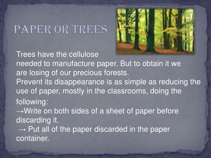 PAPER OR TREES