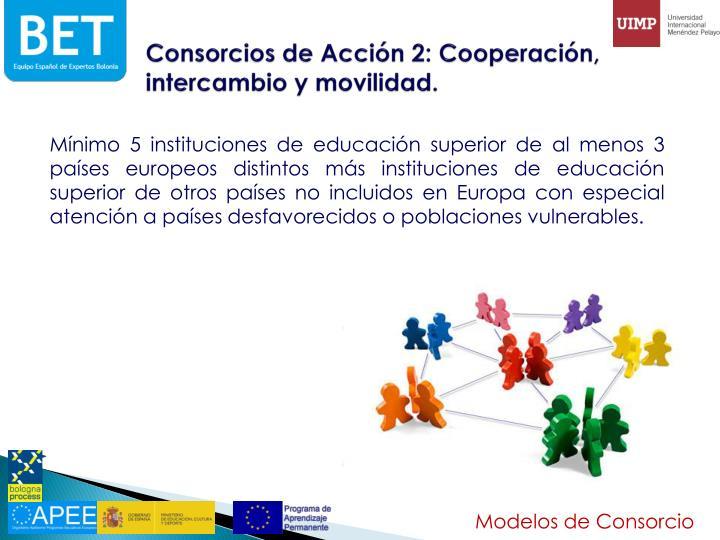 Consorcios de Acción 2: Cooperación, intercambio y movilidad.