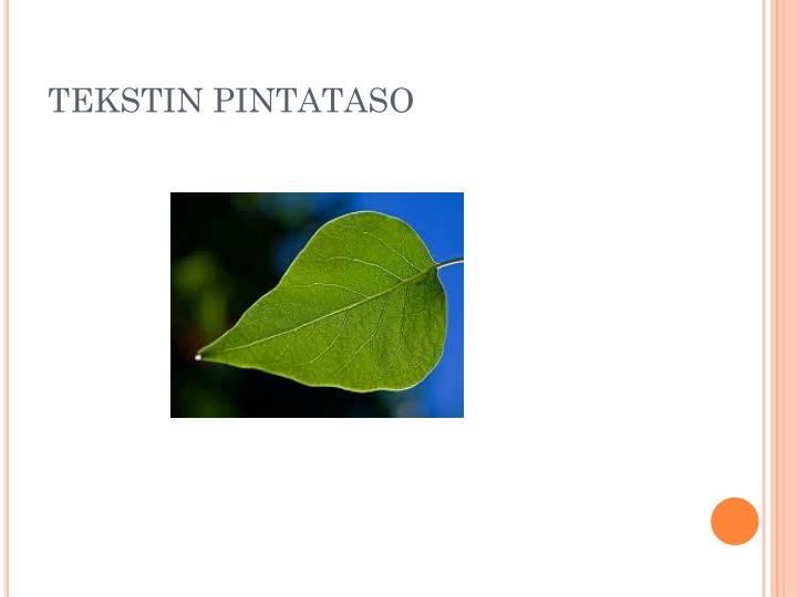 TEKSTIN PINTATASO
