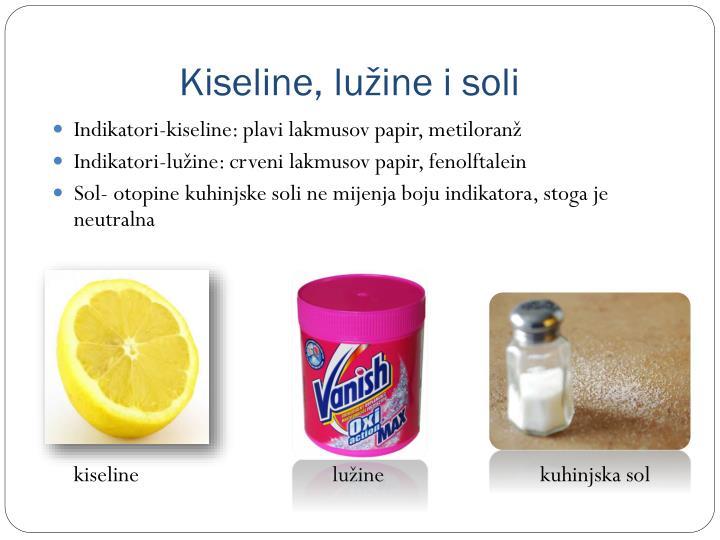 Kiseline, lužine i soli