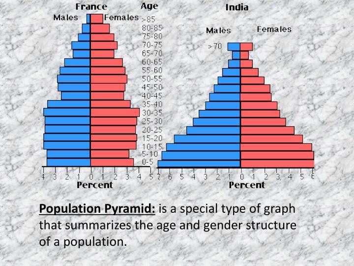 Population Pyramid: