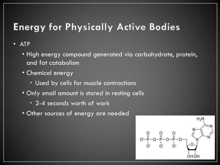 Energy for Physically Active Bodies