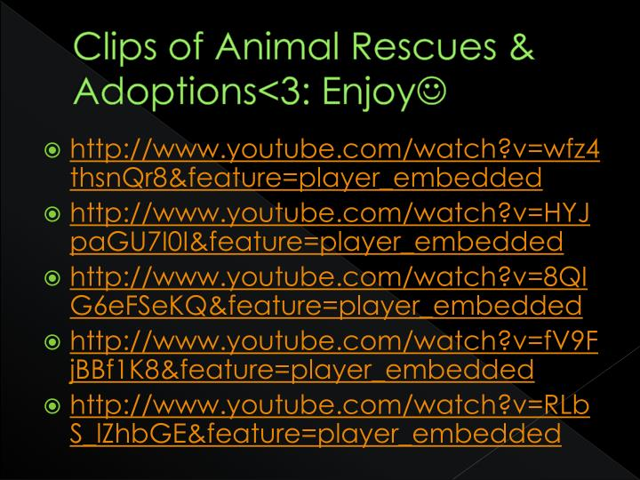 Clips of Animal Rescues & Adoptions<3: Enjoy