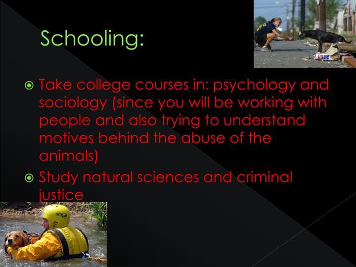 Schooling: