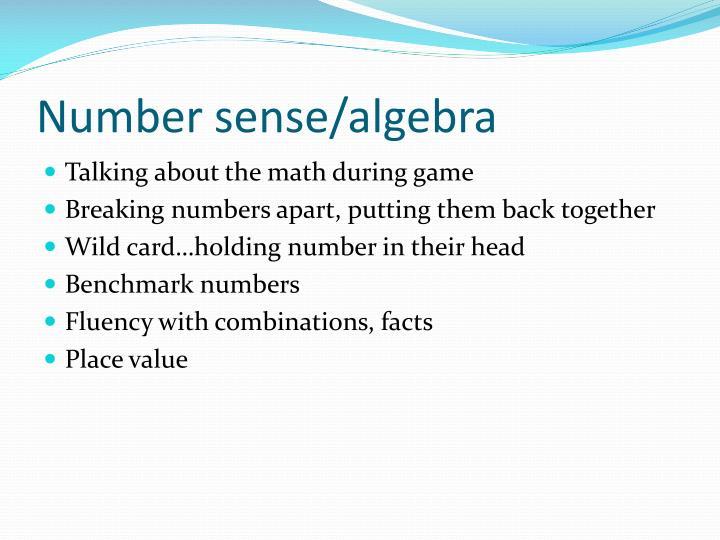 Number sense/algebra