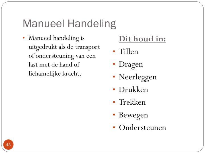 Manueel Handeling