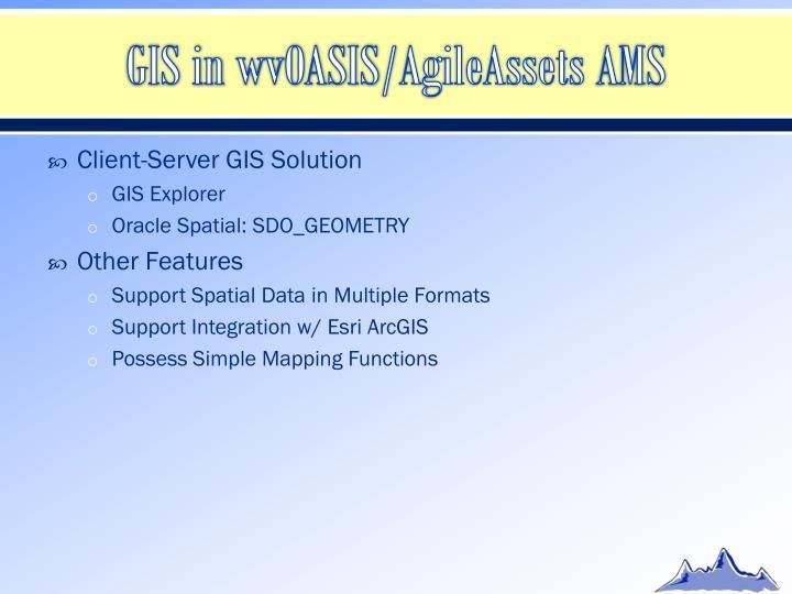 GIS in