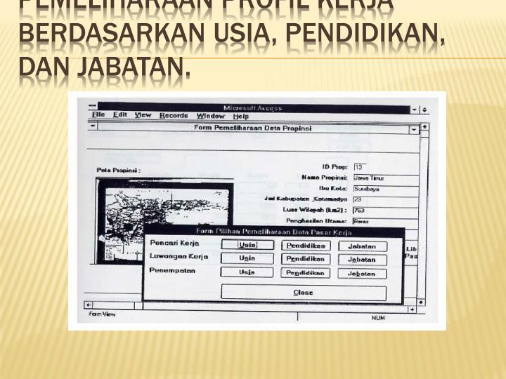 Pemeliharaan Profil Kerja Berdasarkan Usia, Pendidikan,  dan Jabatan.