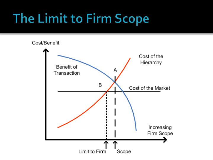 The Limit to Firm Scope