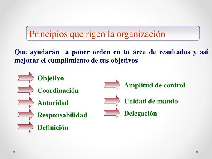 Principios que rigen la organización