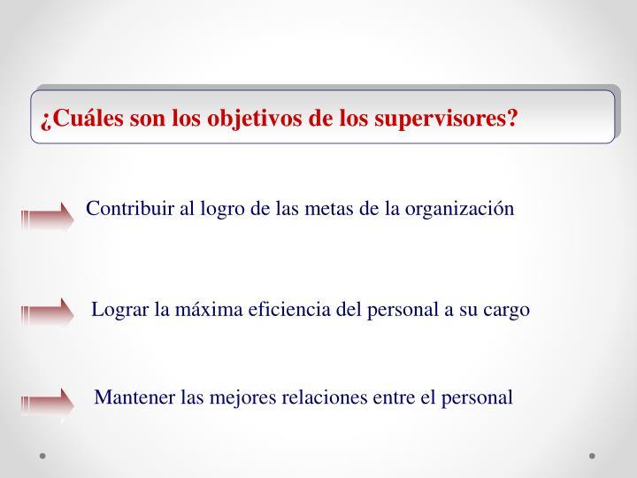 ¿Cuáles son los objetivos de los supervisores?