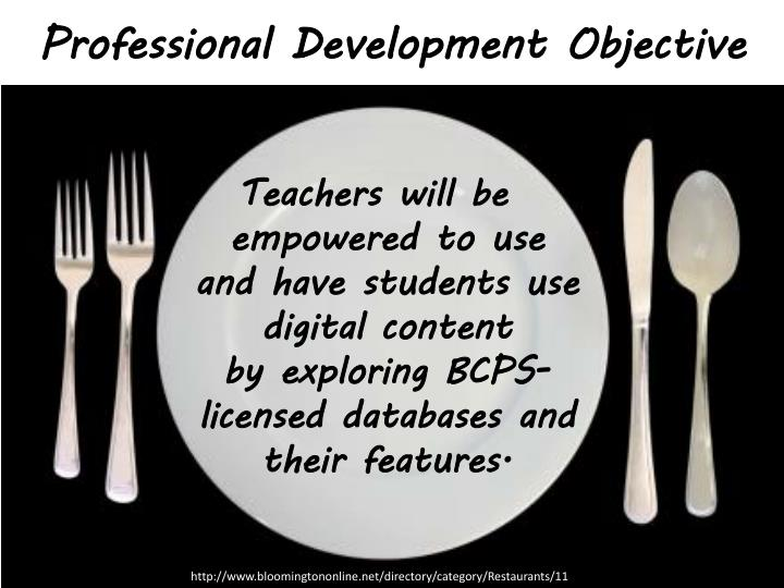 Professional Development Objective