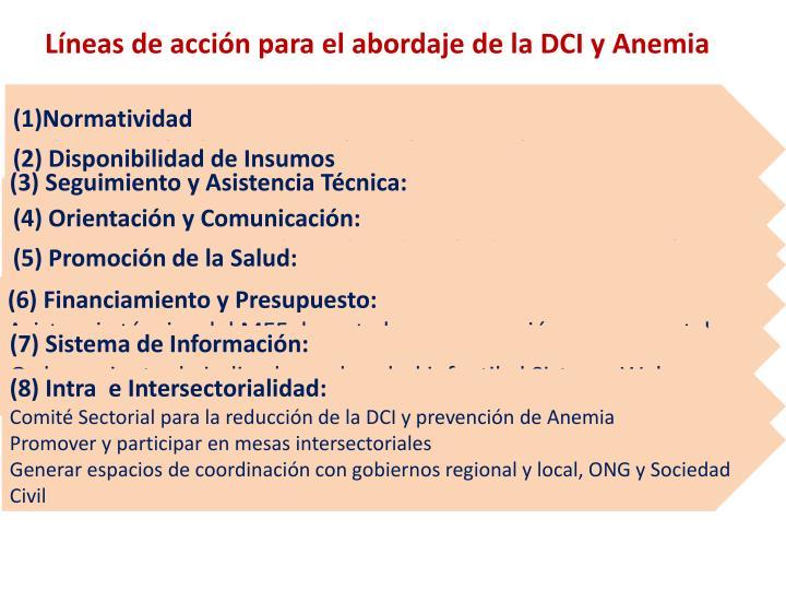 Líneas de acción para el abordaje de la DCI y Anemia