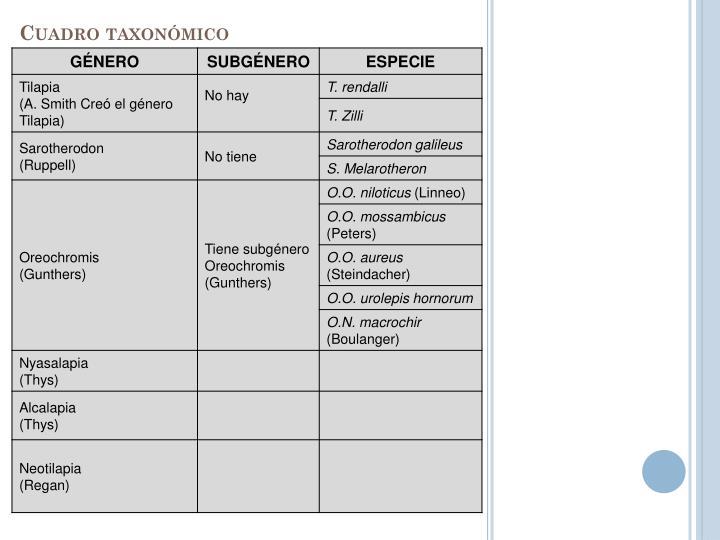 Cuadro taxonómico