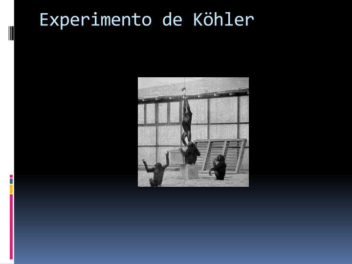 Experimento de