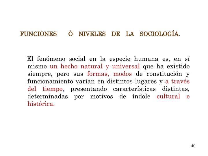 El fenómeno social en la especie humana es, en sí mismo