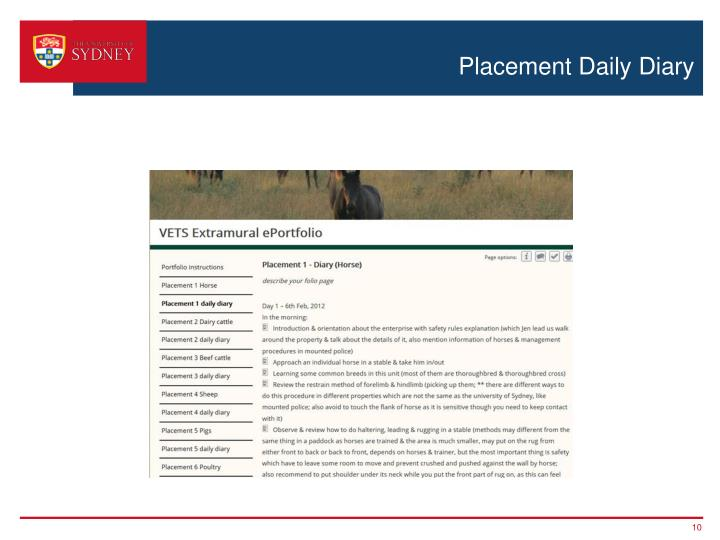Placement Daily Diary