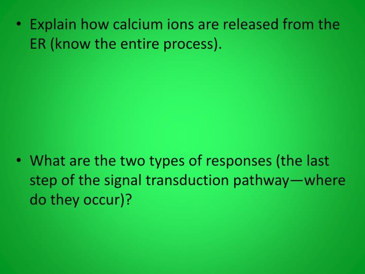 Explain how calcium ions are released from the ER (know the entire process).