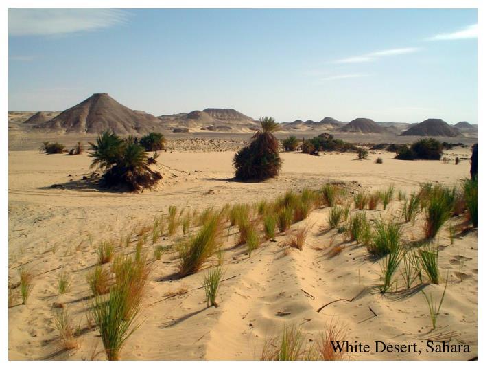 White Desert, Sahara