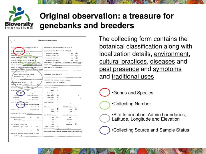 Original observation: a treasure for genebanks and breeders