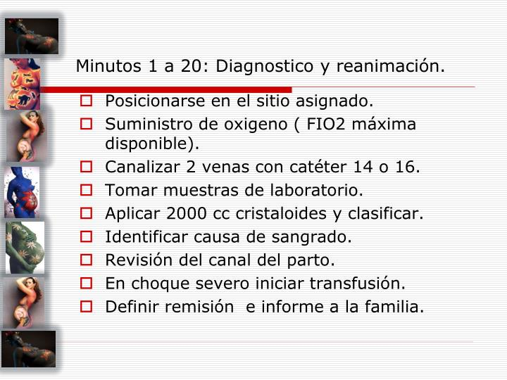 Minutos 1 a 20: Diagnostico y reanimación.