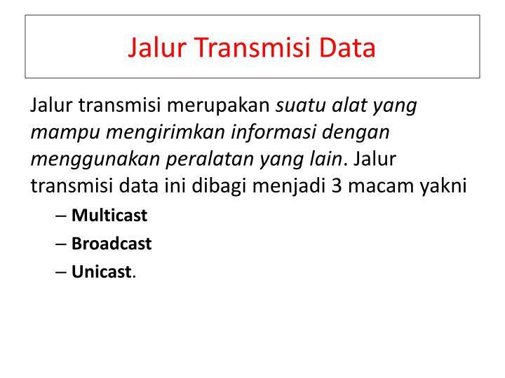 Jalur Transmisi Data