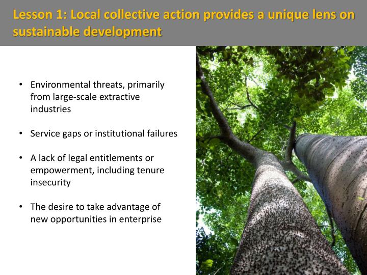 Lesson 1: Local collective action provides a unique lens on sustainable development