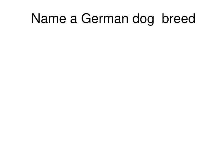 Name a German dog  breed