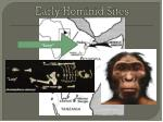 early hominid sites