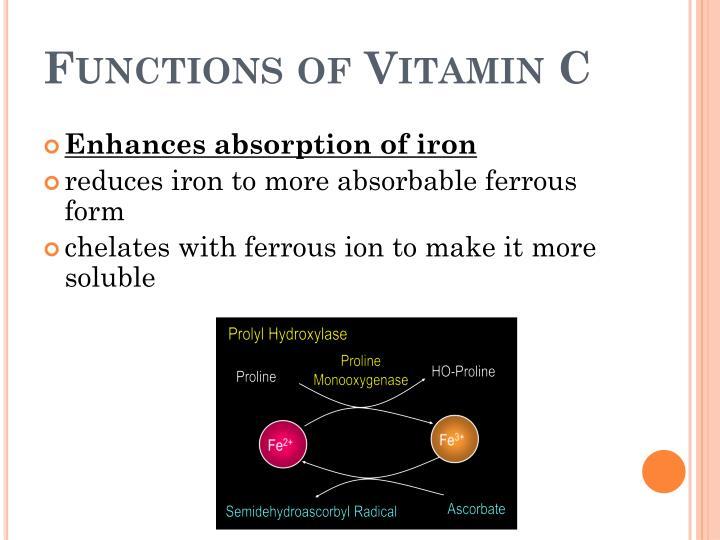 Functions of Vitamin C