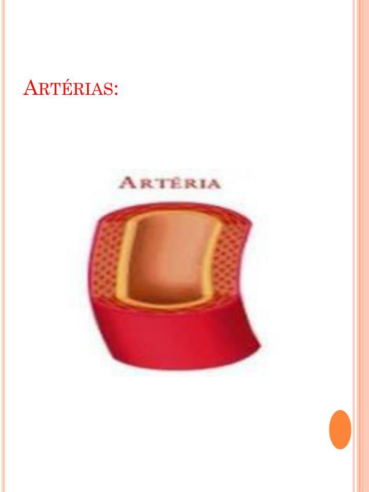Artérias:
