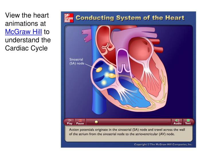 View the heart animations at