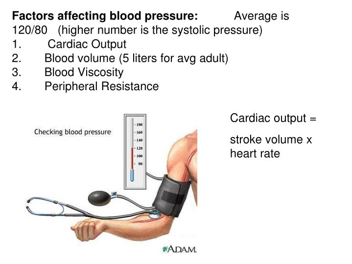 Factors affecting blood pressure: