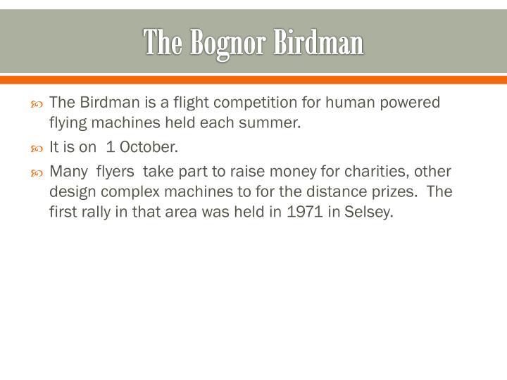 The Bognor Birdman