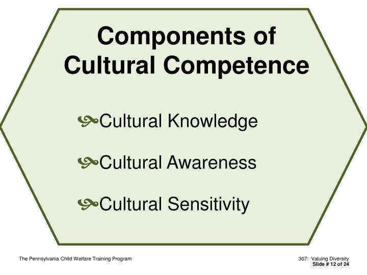 Components of Cultural Competence