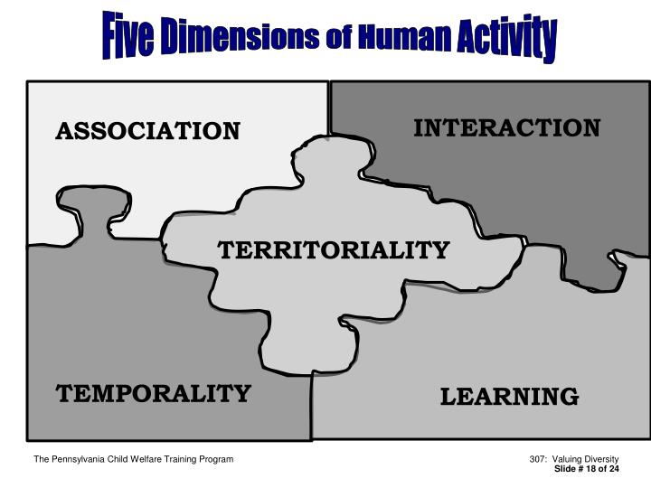 Five Dimensions of Human Activity