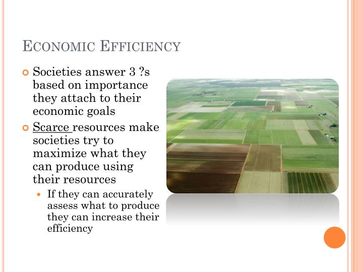 Economic Efficiency