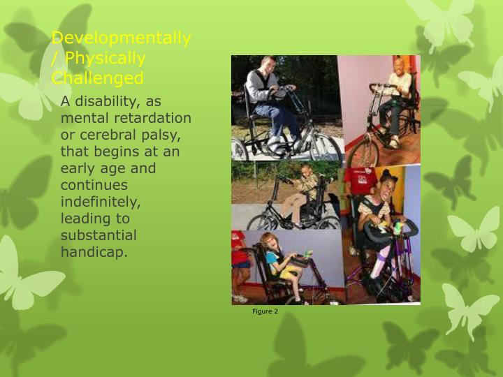 Developmentally/ Physically Challenged