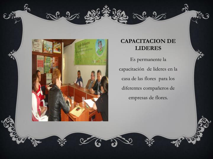 CAPACITACION DE LIDERES
