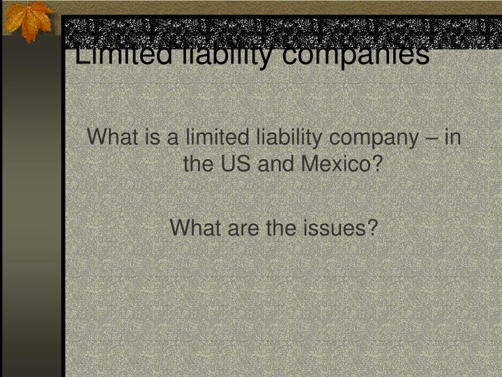 Limited liability companies1