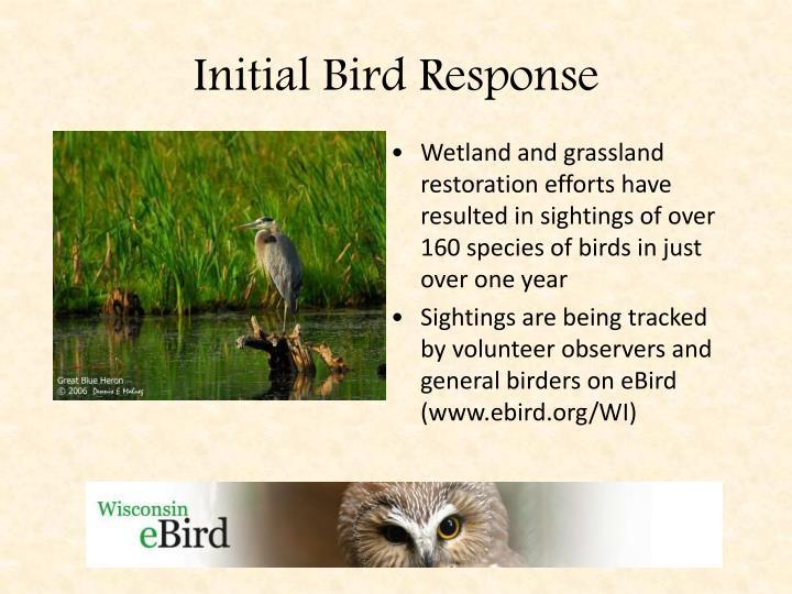 Initial Bird Response