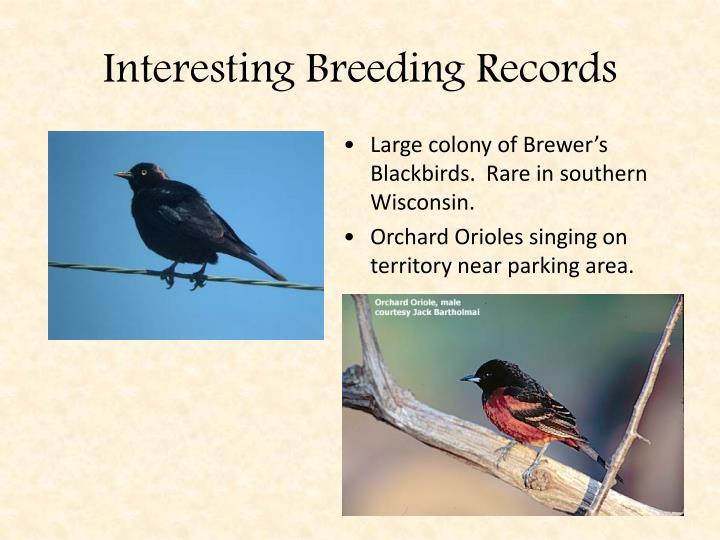 Interesting Breeding Records