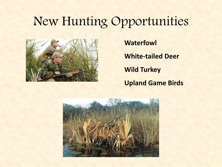 New Hunting Opportunities