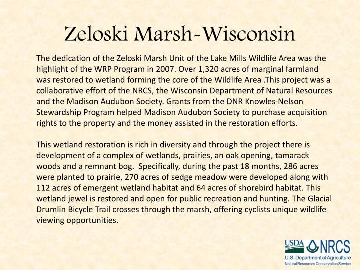 Zeloski marsh wisconsin
