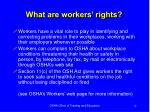 what are workers rights