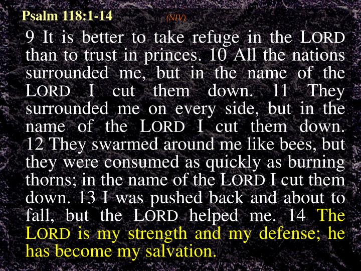 Psalm 118:1-14
