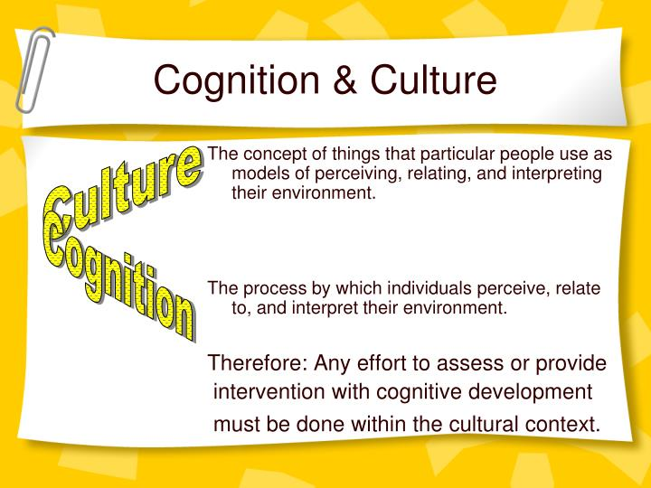 Cognition & Culture