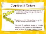 cognition culture